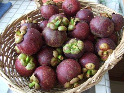 태국의 먹거리 – 망고스틴